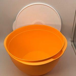 Tupperware Maxi Mexicana Bowl 10 Liter